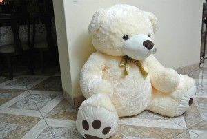 oso-pensativo