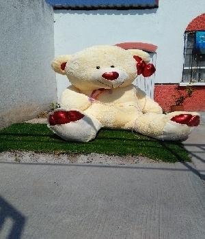 Imagen de Dany oso ultra gigante 21 metros