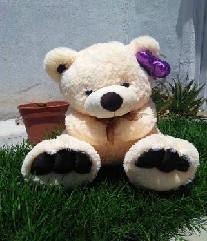 Imagen de Oso de peluche beige violeta 60 cms sentado  numero 0