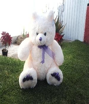 Imagen de Oso de peluche brandon violeta