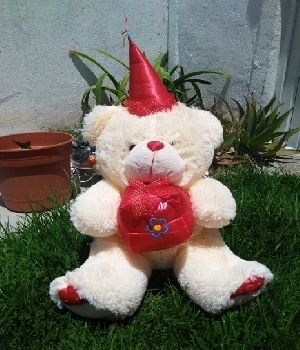 Imagen de Oso de peluche mago gorro rojo 65x40cms numero 0